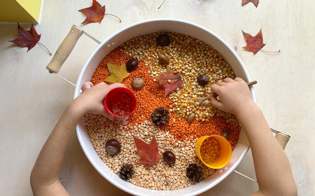 Pudełko sensoryczne z jesiennymi skarbami